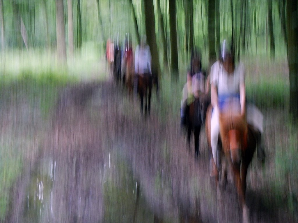 cheval liquide