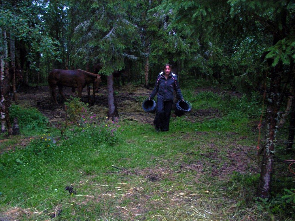 finlande-2008-ricoh-084.jpg