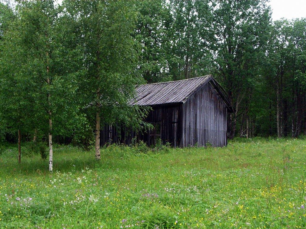 finlande-2008-ricoh-038.jpg